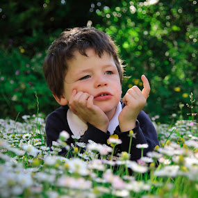 Basking in Daises  by Paul Stevenson - Babies & Children Children Candids ( happy, children, summer, sunshine, pwcsummerfun, fun, flowers, garden )