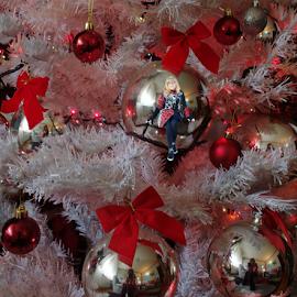 by Branka Radmanić - Public Holidays Christmas