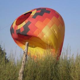 Ballon by Paul White - Transportation Other ( field, hot air balloon, landing, festival city, cedar city utah,  )