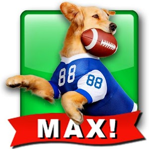 Jerry Rice Dog Football:  MAX!