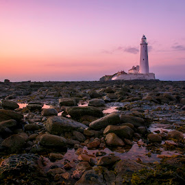 St Marys Lighthouse by Mike Campbell - Landscapes Beaches ( tyne, bay, lighthouse, newcastle, bridge, st, marys, whitley )