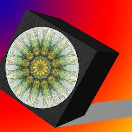 Box by Zsuzsanna Szugyi - Digital Art Abstract