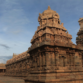 Long past its prime and still standing by Srivenkata Subramanian - Buildings & Architecture Public & Historical ( temple, kumbakonam, hindu, old, india, historical, shiva, worship,  )