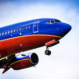 Landing by Prentiss Findlay - Transportation Airplanes ( passenger jet, landing, jet liner landing, jet landing, passenger jet landing )