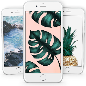 Tropical Wallpapers For PC / Windows 7/8/10 / Mac – Free Download
