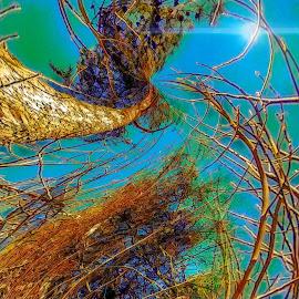 Under Water by Gia Gee - Digital Art Things ( foliage under water, forest foliage submerged, under water, water, flood )