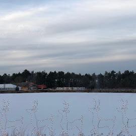 Cranberry Bog at Christmastime by Kristine Nicholas - Novices Only Landscapes ( clouds, reindeer, christmas, snowy, landscape, dusk, lights, winter, cold, snow, tent, cloudy, trees, night, edaville, pond, deer )
