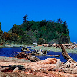 Ruby Beach, Olympic National Park by Randy Sampson - Landscapes Beaches