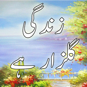 Zindagi Gulzar Ha Novel