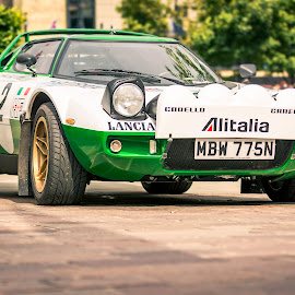 The Stratos by Darrell Evans - Transportation Automobiles ( wheels, black, mid-engined, transport, automobile, outdoor, tipo 829, classic, car, lancia, stratos, lights, rally, sports car )