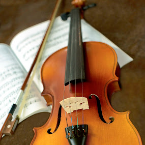 violin by Ranjani Bharath - Artistic Objects Musical Instruments ( string, bow )