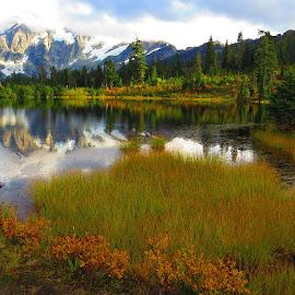 Mt Baker National Park by Loreen Parkerson - Landscapes Mountains & Hills