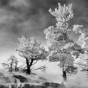 by Gerald Fleury - Landscapes Weather ( black and white, black and white collection )