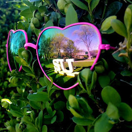 I love SU by Kerri Lane - Artistic Objects Clothing & Accessories ( mirror, reflection, glasses, green, college, bush, pink, letters,  )