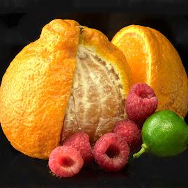 Raspberries, Orange & Lime by Jim Downey - Food & Drink Fruits & Vegetables ( orange, mandrin, lime, black, raspberries )