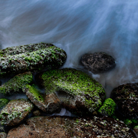Stone Night by Upul.C. Dayawansa - Nature Up Close Rock & Stone ( water, nature, waterscape, art, artistic, beach, landscape, slow shutter )