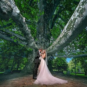 Dejan_Nikolic_fotograf za vencanje_ svadba_weding photo_pixoto_best wedding photo_krusevac_beograd_paracin_milosev konak_beograd_novi sad_vrnjacka banja_aleksandrovac_jagodina_smederevo-kraljevo.jpg