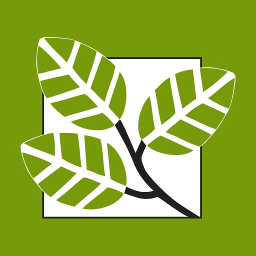 MyFSB Banking App (app)