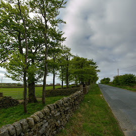 yorkshire dales road by Keith's Captures - Landscapes Travel ( dales, raw, land, 10-20, road, landscape, gree, sky, yorkshire, sigma, nikon, rarm, clouds, tarmac, mm, grass, image, d3200, photo, field, picture, jpg, fence, walls, bushes, trees )