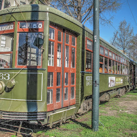 St. Charles Streetcar - New Orleans by Jen Pezzotti - Transportation Other ( new orleans, st. charles, streetcar )