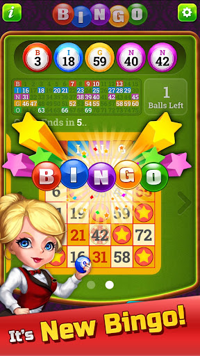 New Bingo - 100% Totally NEW!! For PC