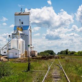 Netley Grainery by Dave Lipchen - Landscapes Prairies, Meadows & Fields ( clouds, train tracks, sky, grainery, fields )