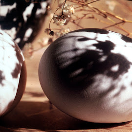Eggs and Bowl by Gayle Mittan - Food & Drink Ingredients ( bowl, spotted, eggs, shadow, window light, still life, black white, dried flowers, egg )