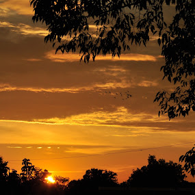 Sunset over Ashville,Alabama by Roger White Jr. - Landscapes Sunsets & Sunrises ( towns, sunset, small,  )