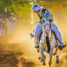 Got it !!! by Bakhtiar Ahmed - Sports & Fitness Other Sports ( horseback, natural light, speed, saddle, dust, horse, tentpegging, light, animal )