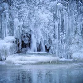 Ledene skulpture by Bojan Kolman - Nature Up Close Natural Waterdrops