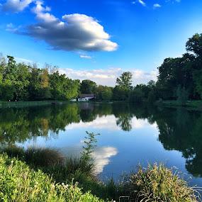 Maksimir lake by Ivana Tilosanec - Instagram & Mobile iPhone ( reflection, park, nature, sunny, natureza, lakes, croatia, lake, spring,  )