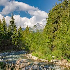 Slovenská príroda-Liptov. by Ján Hrmo - Nature Up Close Water ( voda, stity, stromy )