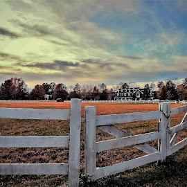 Winter pasture by Sue Delia - Buildings & Architecture Homes ( farm, fence, pasture, winter, autumn, horse )
