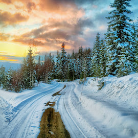 Winter evening  by Mathias Hansen - Transportation Roads ( clouds, forrest, winter, cold, sunset, snow, road, transportation )