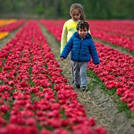 by Bencik Juraj - Babies & Children Children Candids ( flower garden, field flower, children candids, flowers, childrens )