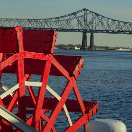 Natchez Riverboat by David Walters - City,  Street & Park  Historic Districts ( water, new orleans, riverboat natchez, colors, bridge, boat )