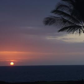 Voggy sunset by Amber O'Hara - Landscapes Sunsets & Sunrises (  )