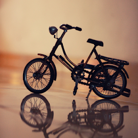 My Bike by Edi Yansyah - Transportation Bicycles ( warm, bike, soft, miniature, bicycle )