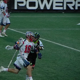 Give me that ball by Kathryn Nagelberg - Sports & Fitness Lacrosse ( boston cannons, ny lizards, lacrosse )