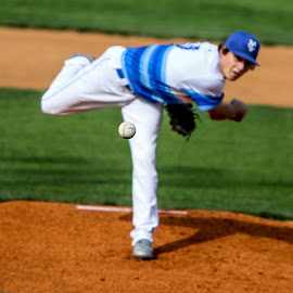 Fastball by Bob DeHart - Sports & Fitness Baseball ( baseball. pitch, fastball, pitcher )
