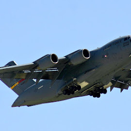 C-17 Globemaster by Alvin Simpson - Transportation Airplanes ( aviation, flight, sky, air force, blue, wings, airplane, aircraft, grey, jet, military )