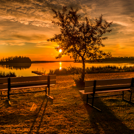 Elk Island City park by Joseph Law - City,  Street & Park  City Parks ( alberta, reflections, trees, elk island, sunshine, city park, picnic table, evening )