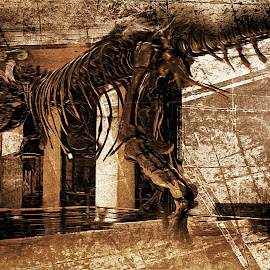 sue by Jon Radtke - Digital Art Animals ( history, sue, old, bones, chicago )
