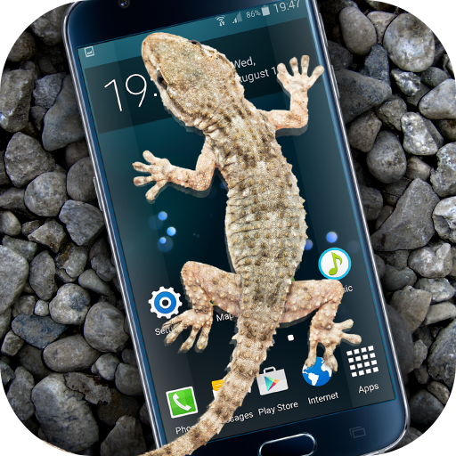 Gecko in Phone scary joke
