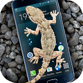 App Gecko in Phone scary joke APK for Windows Phone