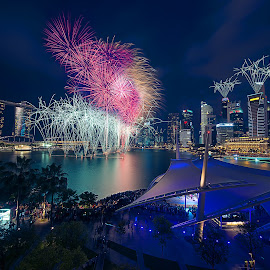 Marina Bay firework by Crispin Lee - City,  Street & Park  Night