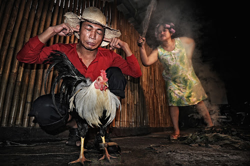 Typical barrio couple scene by Jundio Salvador - People Couples ( barrio, rooster, cock fighting )