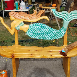 by Rhonda Rossi - Artistic Objects Furniture