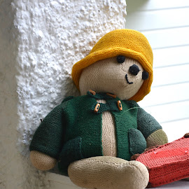 paddington by Rachel Urlich - Artistic Objects Toys ( bear, creative, toy, waiting, home made )