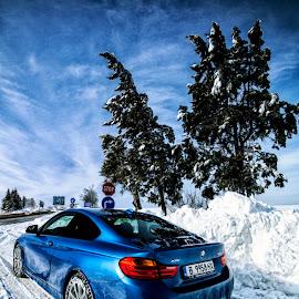 BMW 420d xDrive by Dimitar Novkov - Transportation Automobiles ( 4series, xdrive, snow, bmw, snowday, snowing )